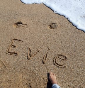 soy_evie
